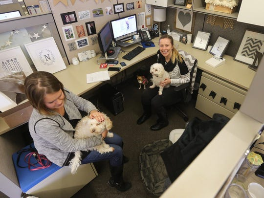 Caitlin Craigie, left, and Kelley Nolan, media buyers at Butler/Till, enjoy a moment with Nolan's dogs at her cubicle. The company allows employees to bring their dogs to work on Fridays.