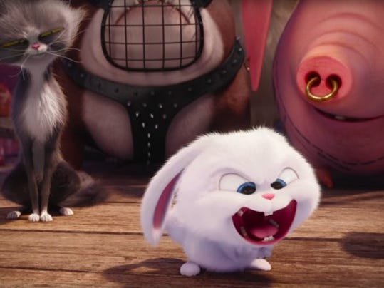 love for animals inspired the secret life of pets