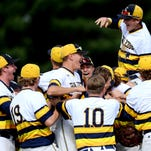 Grand Ledge vs. Portage Northern baseball regional championship