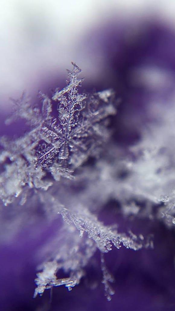 Snowflake!