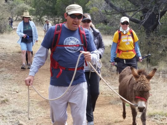Grant County Trails Group chairman Raul Turrieta leads one of the miniature donkeys during Sunday's group hike to Gomez Peak. The hike was held in collaboration with the Continental Divide Trail Coalition, and a large number of hikers came out for the event. April is Grant County Trails Month, Turrieta said, as well as National Trails Month. The next Grant County Trails Group hike will be held on May 15 and will be at Pinos Altos. For more information call Turrieta at 505-977-1056.