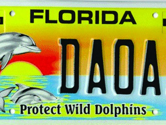Dolphins-license-plate.JPG