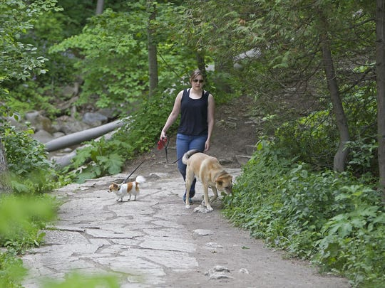 Shawna Lennen and her dogs walk down the Seven Bridges Trail in Grant Park.