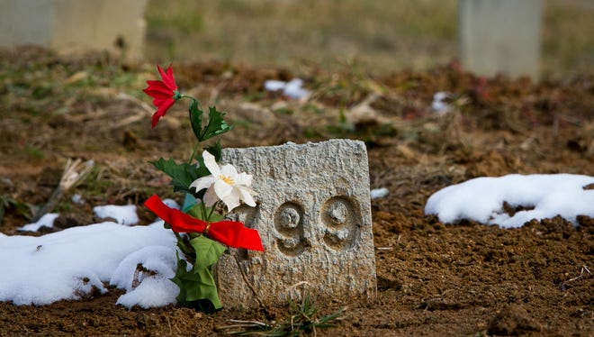 Susan Gregg-Feher rested a flower on the no name grave marker, numbered 799, of her mentally disabled adult brother, Duane Gregg, who died on Aug. 18, 2016 at their home and was accidentally buried in Potters Field Cemetery by the state Medical Examiner office.