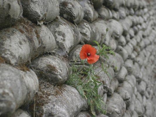 0810 WWI Poppy.jpg