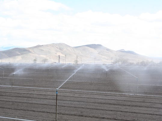 REN0409-MV irrigation sprinklers 3.jpg