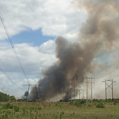 South and North Lee County brush fire strike teams