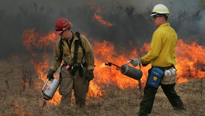 Forty acres on the slopes of Baskett Butte go up in smoke as part of a controlled burn in this file photo.