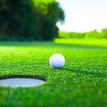 Anchor Bay, L'Anse Creuse qualify for state golf amid controversy