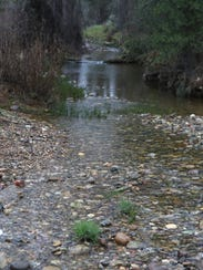 Oregon Gulch Creek is part of an area that the city
