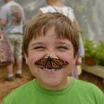 Weekend events include touch-a-truck, butterflies, summer reading kickoff