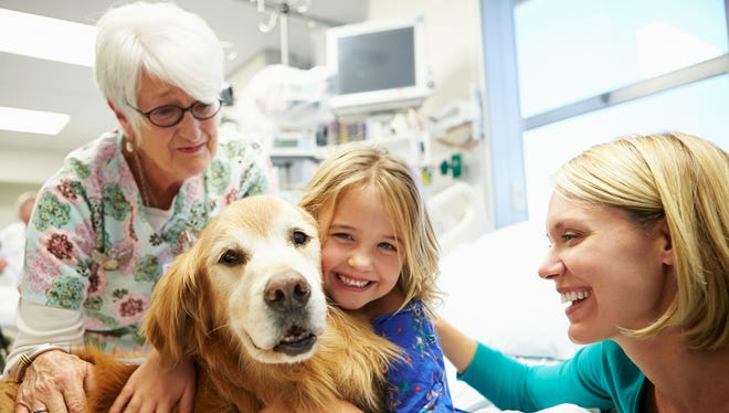 Young girl visited In hospital by therapy dog