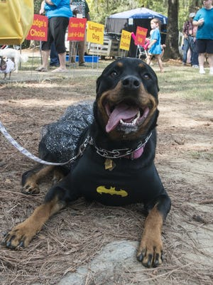 The 11th annual Bark in the Park at Fort Toulouse in Wetumpka, Ala., has been postponed until Sept. 25 due to wet conditions at the park.