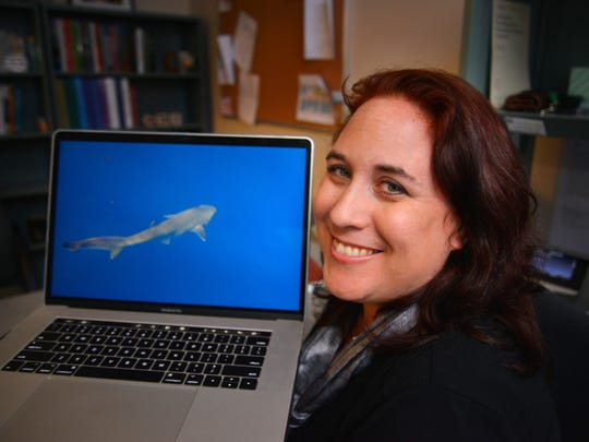 Toby Daly-Engel, assistant professor biological sciences at the Florida Institute of Technology, led a team thats has confirmed and named a new species of shark: the Atlantic sixgill.