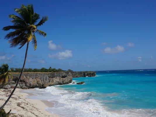Dominica and Barbados_Youn.jpg