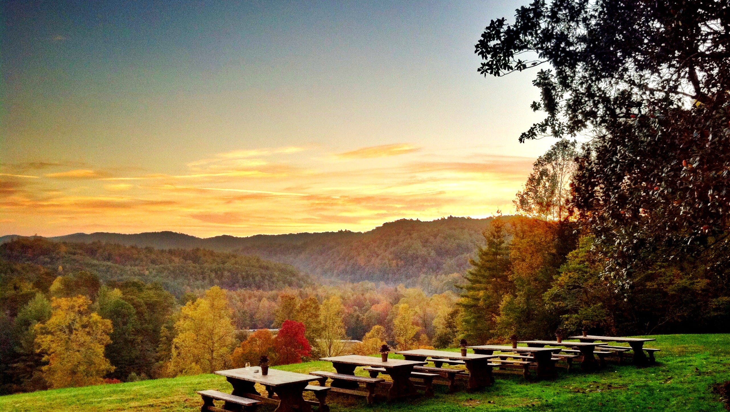 The sun reflects off the reds and yellows of the foliage on Blackberry Farm in Walland, Tenn.