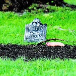 The Lincoln County Court House in North Platte, Neb., took on a little bit of a scary feel on Wednesday morning. Pranksters had decorated some soil patches with tombstones and fake severed limbs.