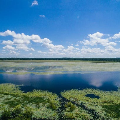 Lake Jackson in north Leon County could produce $26