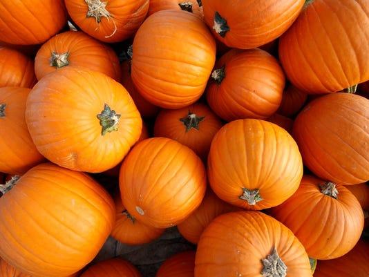 636428400441923235-pumpkin.JPG