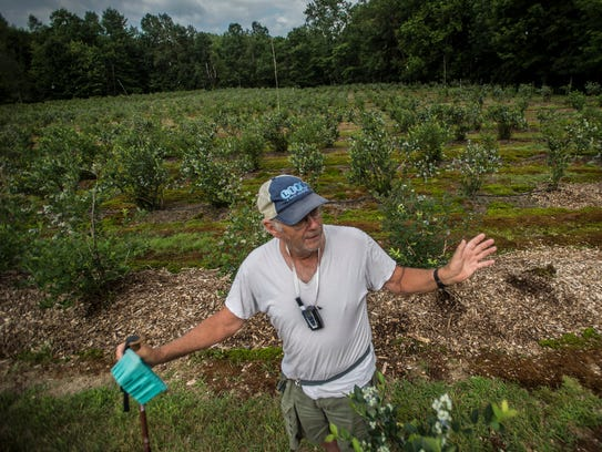 John LaRue of Covered Bridge Berry Patch on River Road