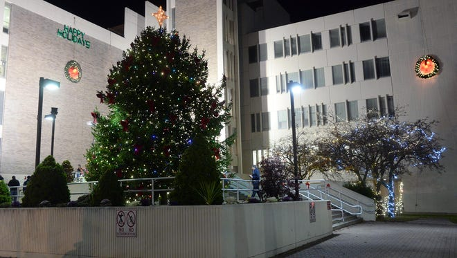 Vineland's Christmas tree is lighted following a ceremony at City Hall Sunday.