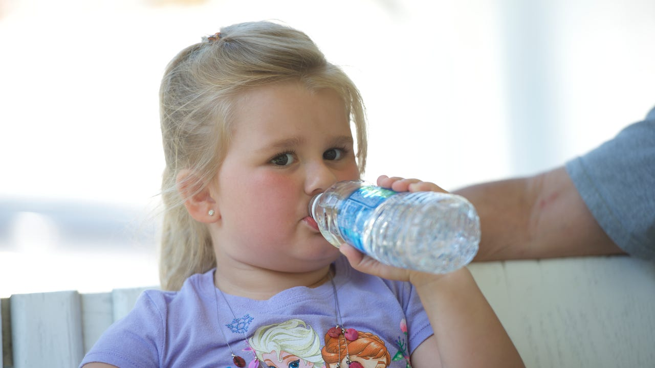 water bottles can carry more bacteria than a dog bowl