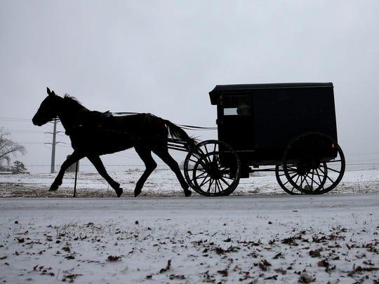 Lovina's Amish Kitchen icon