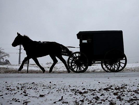 AmishCookicon.jpg