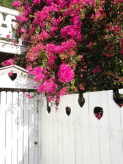 White, decorative gate with nature's beautiful color makes you want to see more of this home.
