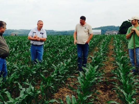 Darr Farms - cover crop walk.jpg