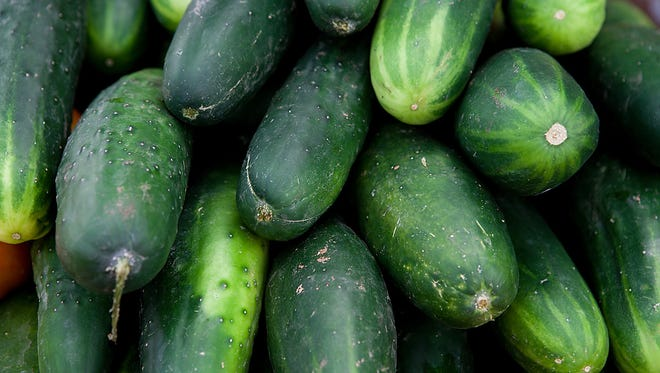 Cucumbers are a good cool season crop.