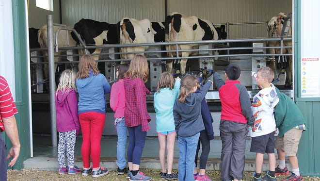 Third and fourth grade students from Dunn County watch cows riding the rotary milking parlor.