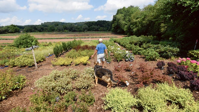 In this July 2015 photo, Rudy Ploch works his farm in Clifton. Despite New Jersey's abundant farmland, it was not officially known as the Garden State until now.