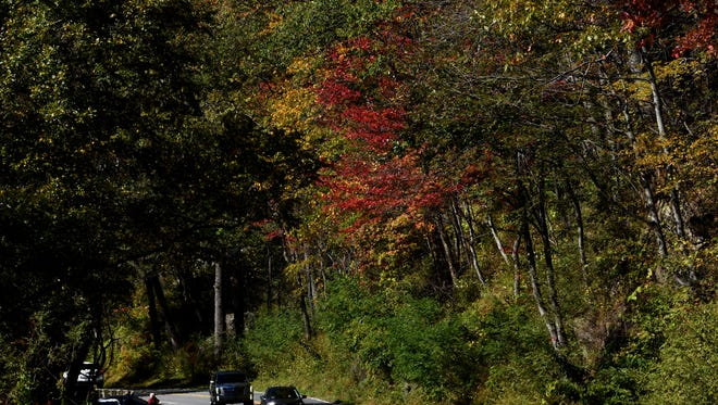 Traffic moves along U.S. 441 outside Gatlinburg as the color of the fall leaves seems a bit muted Thursday, Oct. 26, 2017.