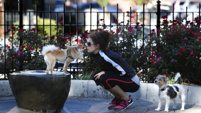 Claire Hoetker gets a kiss from Bandit, her Pomeranian, as her other dog, C.C., stands behind her in this photo from 2012, when Washington Park's dog park opened.