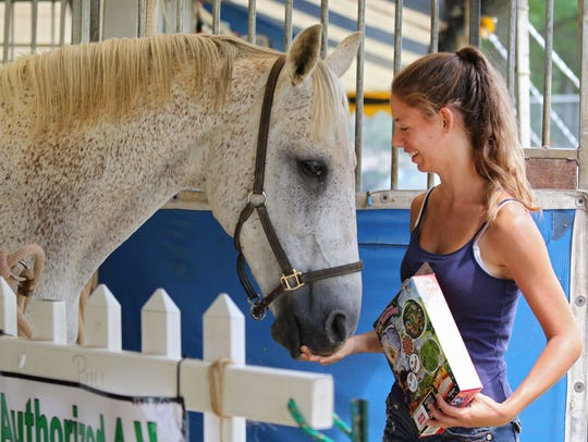Nicole Bursac, of North Brunswick, feeds Misty, an
