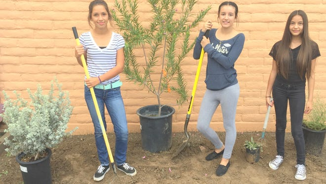 From left, are Snell eighth grade students, Isabella Zamora, Jannia Cohn and Alicia Cabrera, who participated in a project to beatiufy the middle school in Bayard.