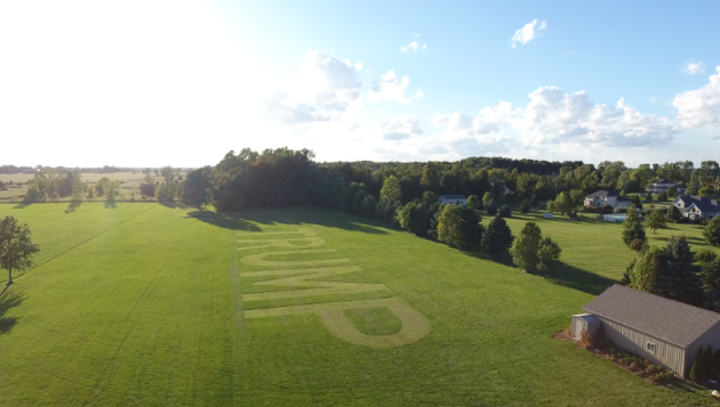 Donald Trump supporter mows massive sign on lawn