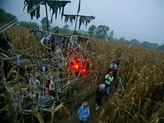 People meander through a corn maze near a scary Pirates