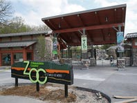 More than 14 months out, 2020 DNC eyeing Milwaukee County Zoo, parks and buses