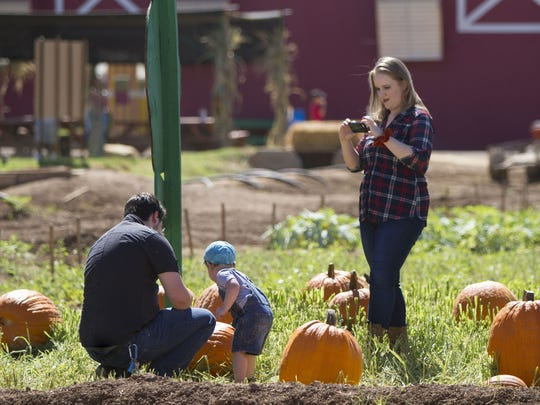 Anna Sweigart photographs Zach and Liam Sweigart in the pumpkin patch at Tolmachoff Farms in Glendale on Saturday, Oct. 3, 2015. The pumpkin patch and corn maze at Tolmachoff Farms opened October 1 and will end on November 8.