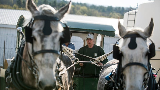 In this May 5, 2015 photo, Patrick Palmer drives his horse-drawn garbage collection wagon and its crew along a street in Middlebury, Vt. Palmer's horses have clip-clopped through the sleepy village of Bristol collecting trash for 18 years. Now he is training a younger crew to collect trash with a team of draft horses in the busier college village of Middlebury. (AP Photo/Andy Duback)