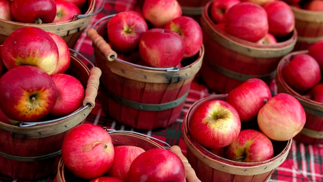 Baskets of apples from Country Mill Farms are displayed at their booth on Sunday, Sept. 17, 2017, at the East Lansing Farmer's Market. Country Mill Farms returned to the farmer's market two days after a federal judge granted an injunction against the city and its decision to ban farm owner Steve Tennes over his decision not to hold same-sex weddings at this Charlotte farm.