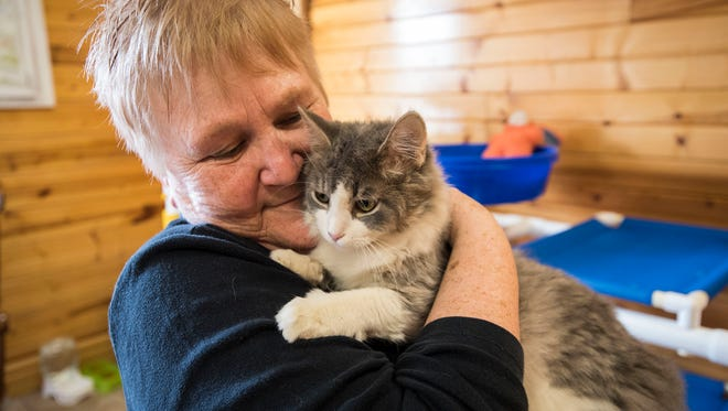St. Clair County Animal Control volunteer Pat Hendra holds Missy, a 6-month-old long-haired cat at the St. Clair County Animal Shelter Friday, March 16, 2018.