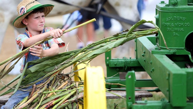 Marshall Fink feeds cane into a machine to extract sorghum molasses during a demonstration at the Indiana State Fair in 2014.