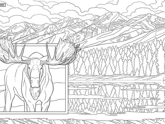 """A coloring page from """"Montana Coloring Book"""" by Ted"""