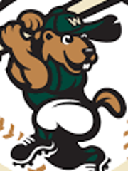 Wisconsin Woodchucks