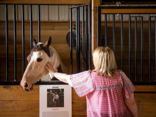 A visitor pets Indie the horse at The Gentle Barn in