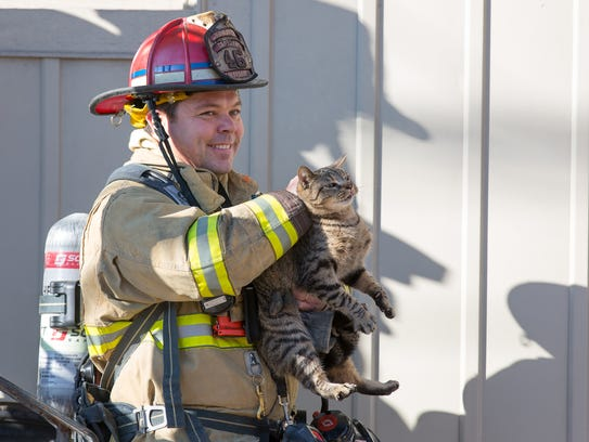 A firefighter rescues a cat from the scene of a residential
