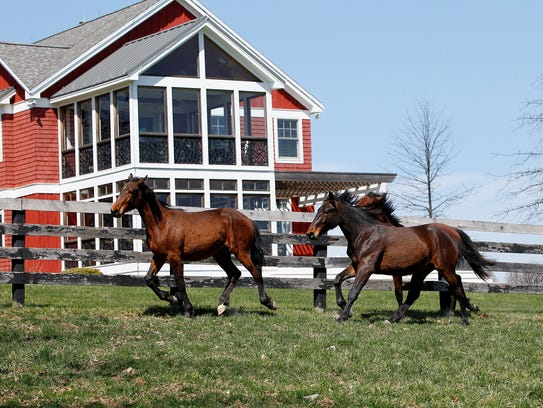 Allerage Farm in Sayre, Pa owned by Jeff Gural, and